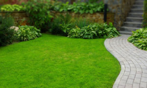 landscaped front yard and brick walkway in Barrington Estates